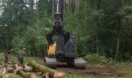 Werkzaamheden recreatiebos Hollandse Biesbosch gestart