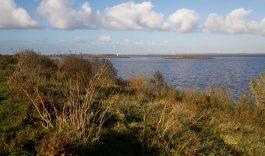 Biesbosch en Haringvliet, één nationaal park van wereldklasse
