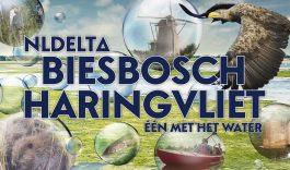 Nieuwsbericht NLDelta Biesbosch-Haringvliet