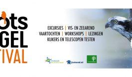 Roots Vogelfestival Biesbosch