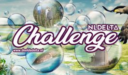 Wedstrijd: 'NLDelta Challenge: Deel de Delta!'